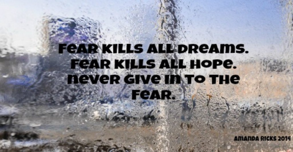 quote about fear from surprisinglives.net