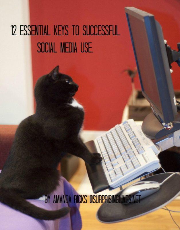 surprisinglives.net/12-essential-points-social-media/
