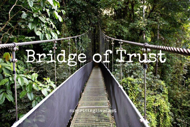 surprisinglives.net/bridge-of-trust-costa-rica-photo/
