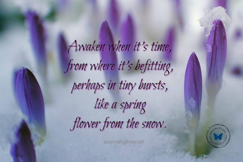 surprisinglives.net/awaken-flower-header/