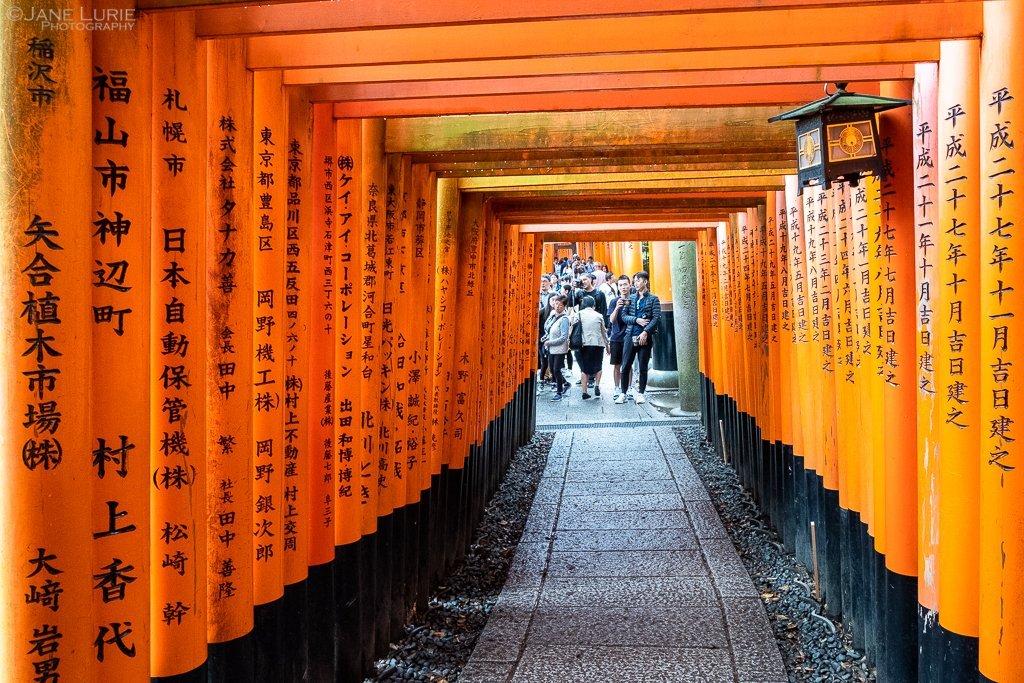 surprisinglives.net/japan-people-culture-contrasts/