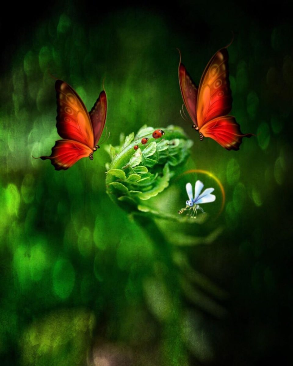 green flowers and butterfly by surprising lives