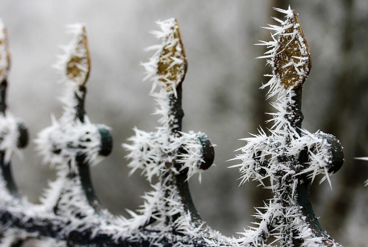 snow sculpting by surprisinglives.net