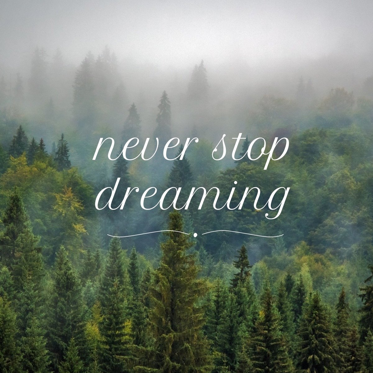 never stop dreaming image quote